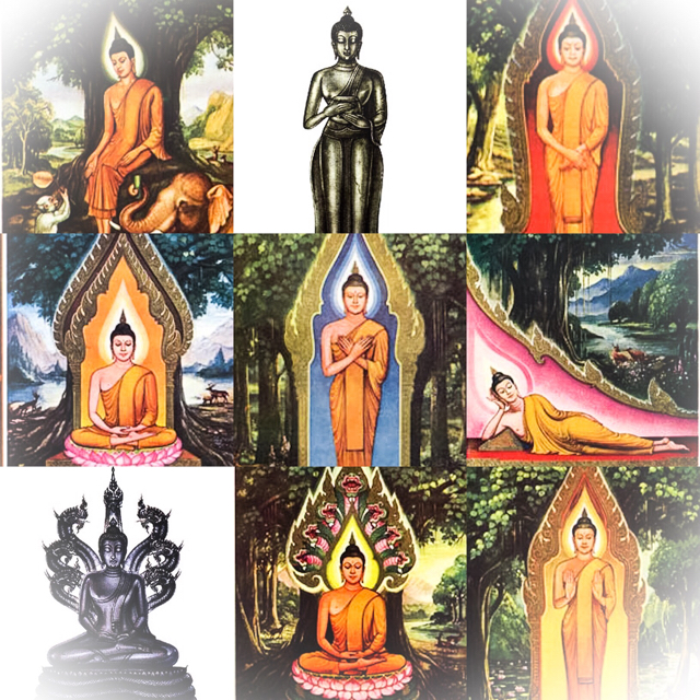 8 Birthday Buddhas